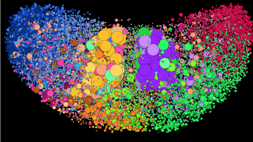 Twitter's Isolated Bubbles vs. America's Nuanced Political Reality