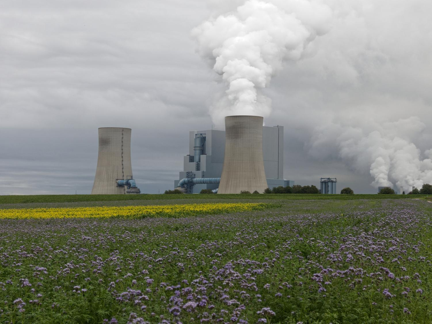Using the Market to Combat Climate Change: Cap-and-Trade