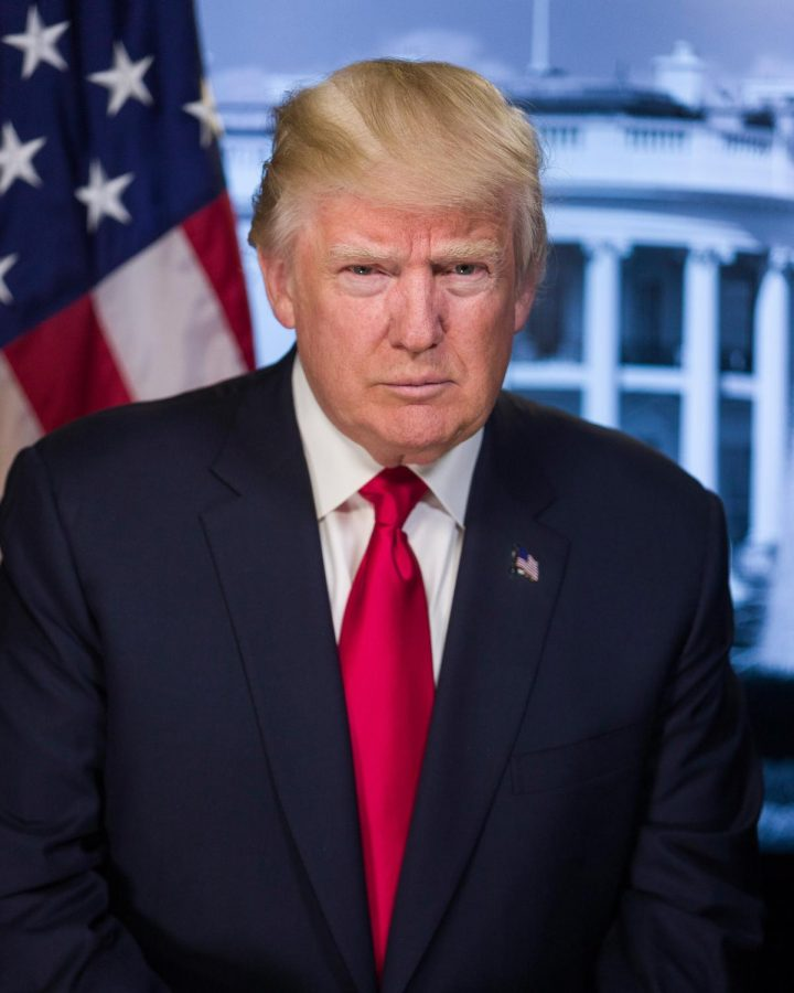 The+Impact+of+President+Trump%E2%80%99s+Tax+Returns+on+the+2020+Presidential+Election