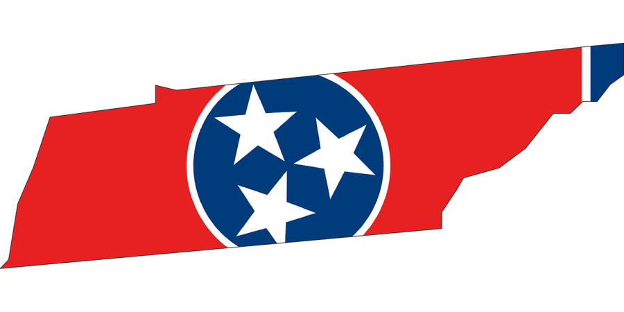 Third Party Election Results in Tennessee