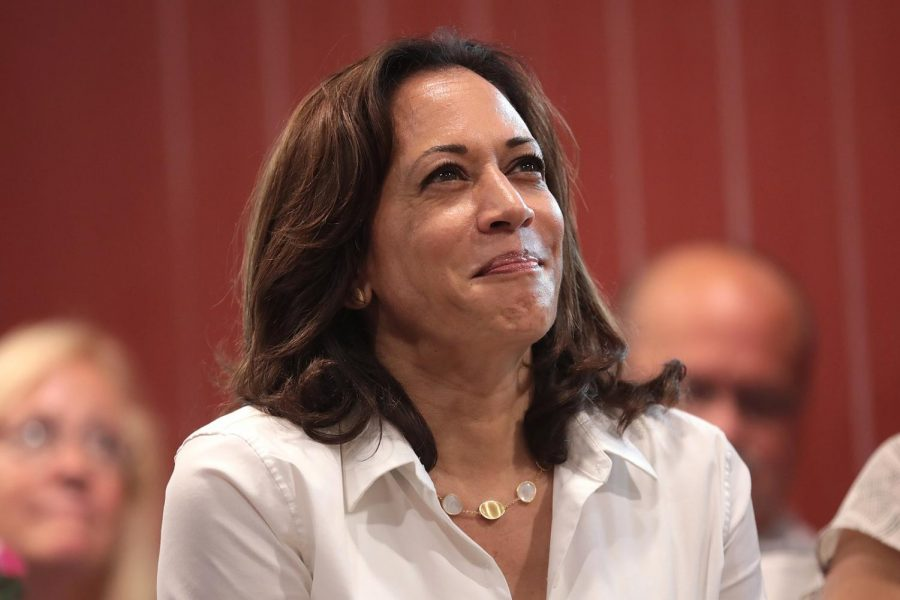 Kamala Harris and the Dawn of Asian American Politics