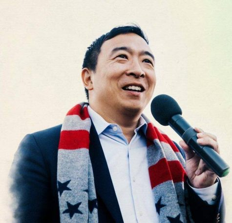 Andrew Yang and Misaligned Incentive Structures in the American Political Landscape